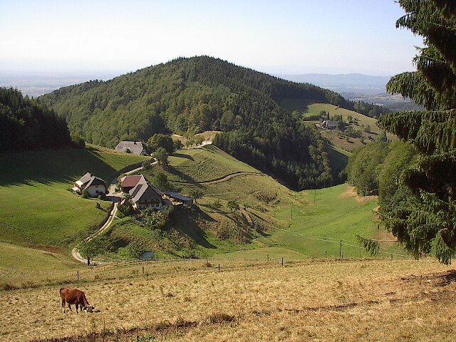 Ohne Bauern gibt es keine Schwarzwaldlandschaft und ohne das typische Landschaftsbild mit dem Wechsel von Wald und Weiden