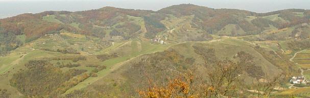 Kaiserstuhl: Blick vom Neunlindenturm nach Norden zum NSG Badberg (vorne) und Katharinenberg (oben)