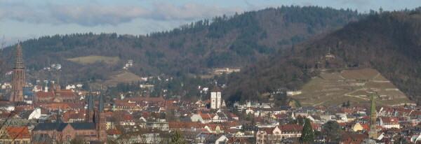 Freiburg: Blick nach Norden vom Lorettoberg zu Münster, Schwabentor und Schloßberg am 15.1.2008