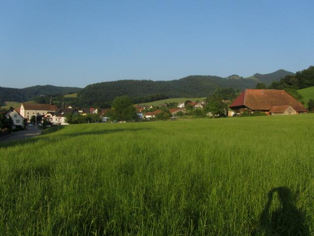 oberried-rombachhof130715