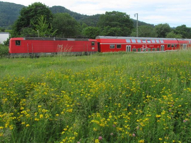 radler-regiobahn120527