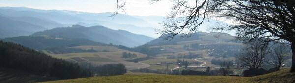 Blick vom Schmittenbach nach Süden über St.Peter zu Feldberg (links) und Schauinsland (rechts) am 10.2.2008