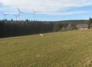wind-stpeter-plattenhaeusle141128