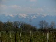 bodensee-alpen160411
