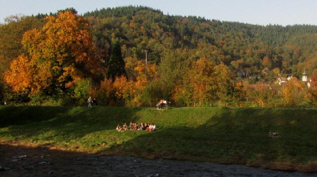 Blick nach Norden über die Dreisam nach Ebnet am 22.10.2012