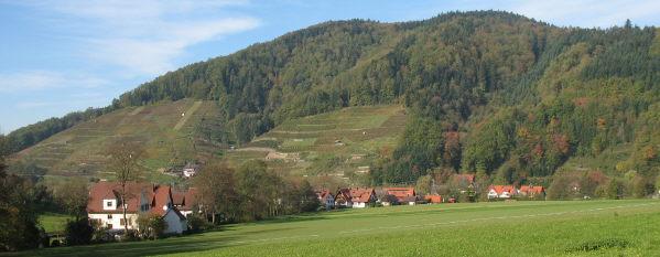 Blick vom Ahlenbach nach Norden zum Glottertäler Eichberg am 6.11.2006