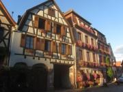 elsass2fachwerk-bergheim150920