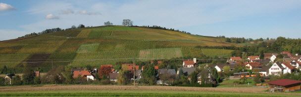 Reiches Markgräflerland: Blick nach Nordwesten über Mauchen zum Himmelberg am 2.11.2006