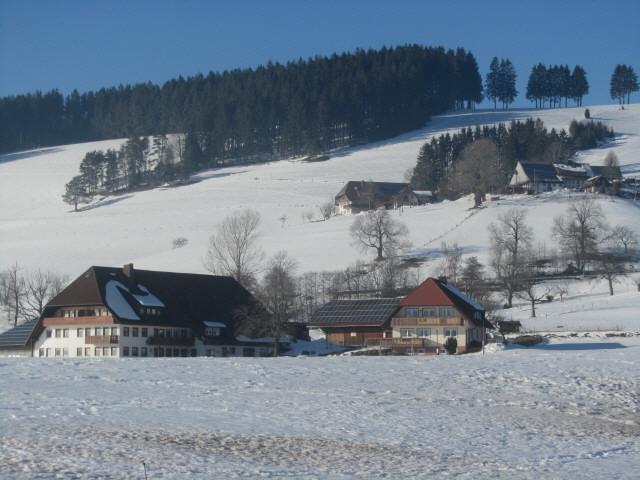 stpeter-ingritthof130308
