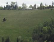 Blick vom Wildtaeler Eck nach Südosten zum Streckereck am 1.5.2012