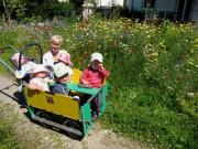 Kunder und Blumen passen zusammen - 22.6.2012