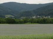 Kornblumen am 7.6.2012: Blick nach Süden zum Kepplertal