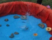 Fronleichnam FR-Littenweiler 10.6.2012: Wellen schlagen mitz dem Steinwurf