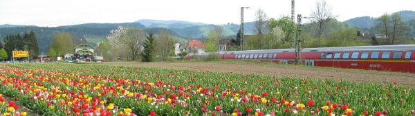 Blick nach Westen zum Bahnhof Himmelreich der Hoellentalbahn am 30.4.2008