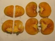 kakifrucht-scheiben161207