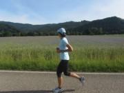 Kornblumen am 24.6.2012 - Jogging - Windräder