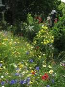 Gregor aus Ton und Blumen am 29.6.2012