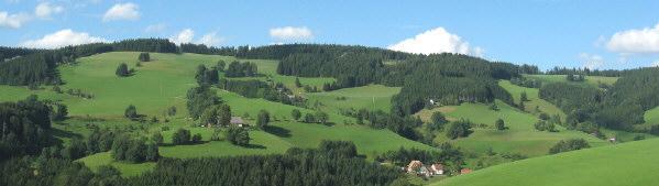 Blick vom Zwerisberg zwischen St.Peter und St.Märgen nach Norden über Oberibental am 18.8.2008