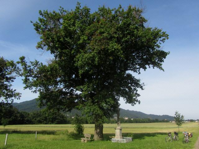 wanglerkreuz3-120623