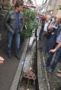 Bächle Freiburg 6.7.2012 - Timm Gutmann