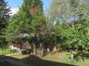 feigengarten5schopf161003