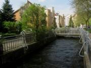 gewerbebach-hirzberg130507