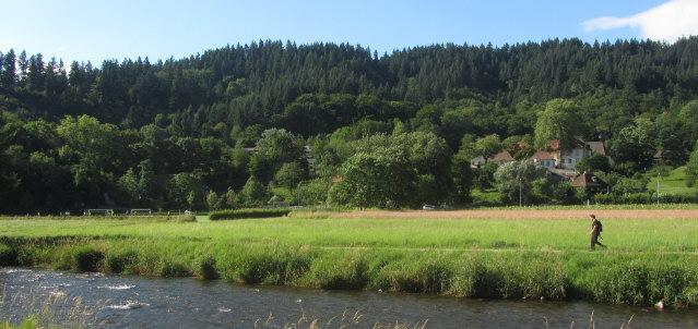 Blick nach Norden über Dreisam und Uni-Sportplatz (links) zur Kartaus am 13.7.2012