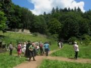 Kartaus am 22.7.2012: Blick nach Osten im Garten