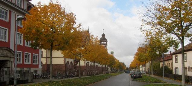 Blick nach Westen am 6.11.2012 auf Schützenallee - Lycee Turenne links