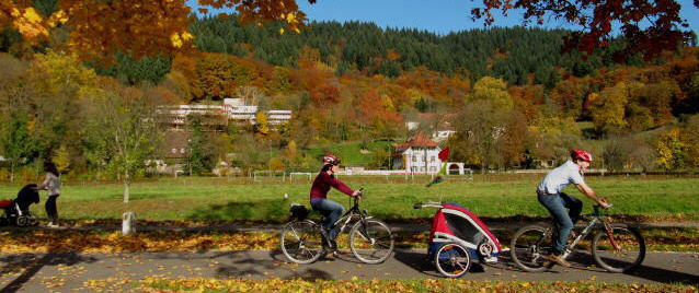 Dreisam-Fahrradweg zwischen Freiburg und Ebnet am 4.11.2010 - Blick zur Kartaus