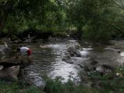 Dreisam am 22.8.2012 - er schwimmt und sie baut einen Steinturm