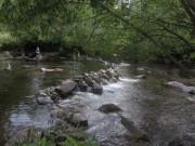 Dreisam am 22.8.2012 - Badvergnügen im rauschenden Bach