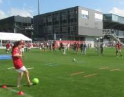 Fuechsle-Tag beim SC Freiburg am 12.8.2012 - Blick nach Osten