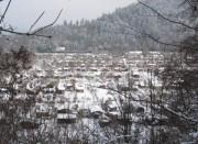 Blick nach Osten vom Lorettoberg am 12.2.2010 über die Schrebergärten an der Wonnhalde