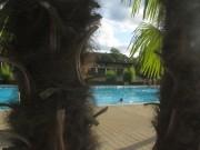 Strandbad am 8.8.2012 - Blick nach Süden durch die Palmen