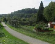 Wonnhalde 4.10.2012 - Kleingärten - Blick nach Westen