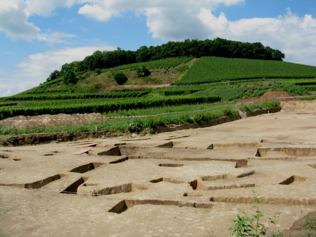 Steinzeitdorf am nordwestlichen Rand von Bischoffingen (31.7.2010)