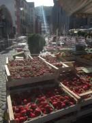 erdbeeren-morgens150522