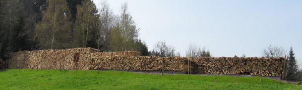 Holzbeuge an der Immi im Dreisamtal 17.4.2010