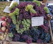 muenstermarkt-trauben150911