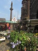 muenstermarkt14blumen140327