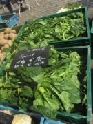 muenstermarkt4spinat140327