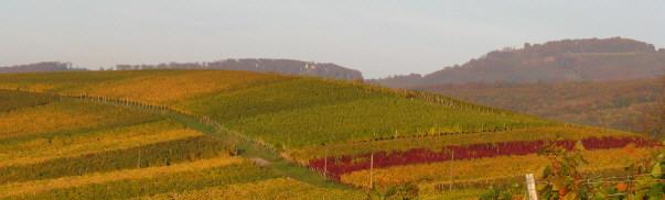 Tele-Blick nach Osten über den Batzenberg zum Schönberg am 19.10.2008 - Mitte Ruine Schneeburg