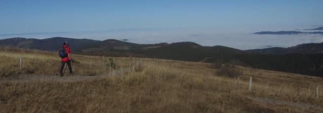 Blick nach Westen vom Feldberg ins neblige Rheintal am 25.10.2012 - Wanderin