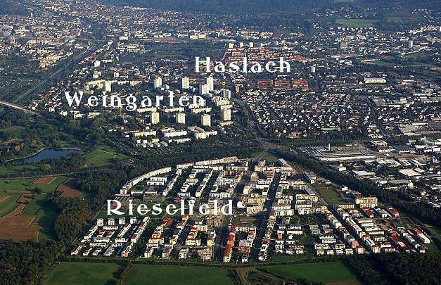 haslach-weingarten-rieselfeld2016