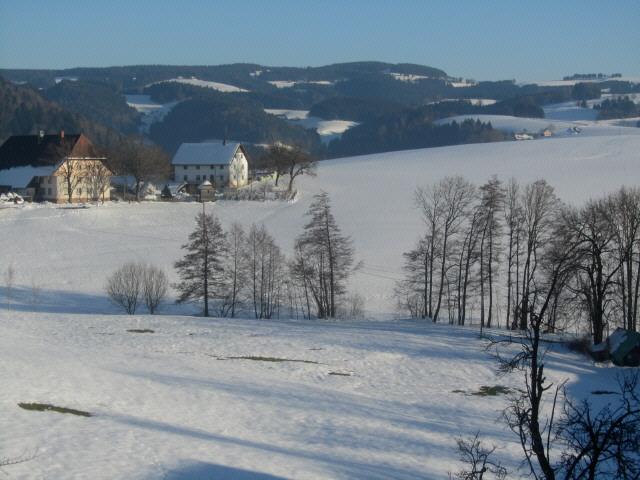 kussenhof-schweighoefe130308