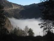 nebel19feldberg-pass141205