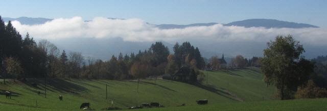 Blick nach Süden über Lindenberg-Kirche und Dreisamtal-nebel zum Feldberg am 23.10.2012