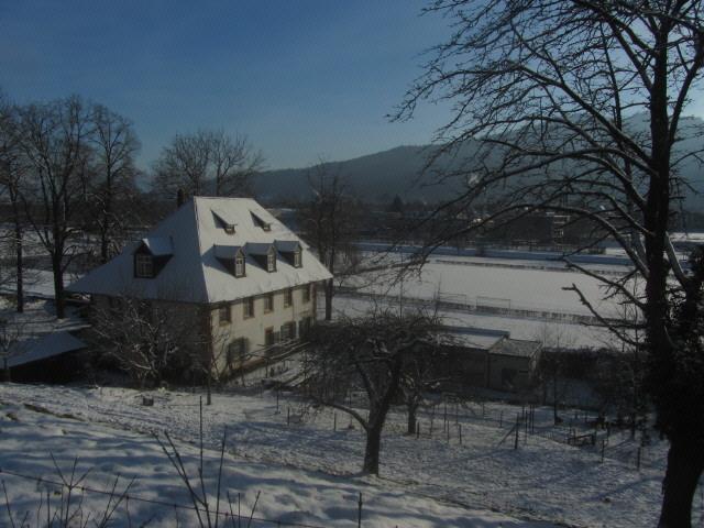 kartaus10wirtshaus121212