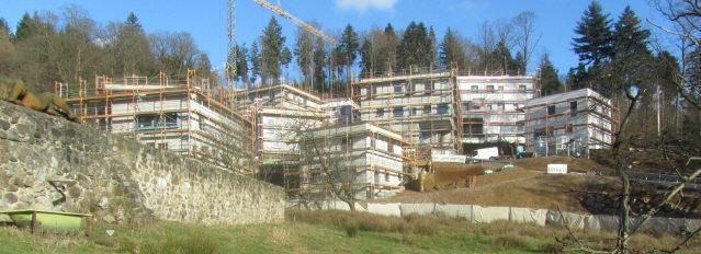 Blick nach Nordosten im Dreisamtal zu den neuen Personalhäusern an der Kartaus am 9.1.2014 - links auf der Gartenmauer die Regenfrau von Thomas Rees